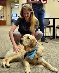 "Students take time to ""paws"" and relax during Northeast's finals week"