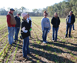 Northeast, National Corn Growers sponsor field day