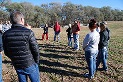 Northeast to host cover crop field day