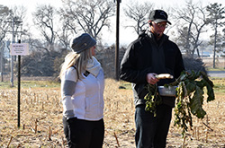 Northeast hosts cover crop field day