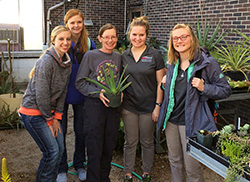 Special topics herbal class complements horticulture curriculum at Northeast