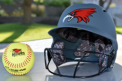 Northeast softball prevails over Concordia JV
